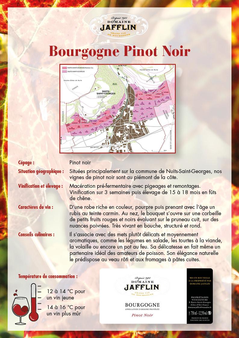 bourgogne-pinot-noir