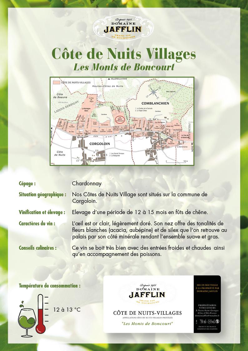 cote-de-nuits-villages-b
