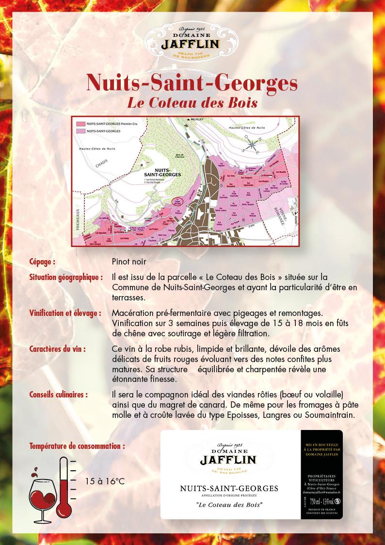nuits-saint-georges-coteau